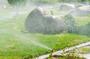 Custom sprinkler system