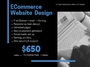 Affordable eCommerce Website