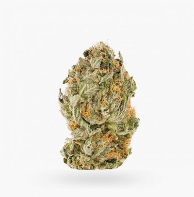 Pink Kush (AA)   Hush Cannabis Club