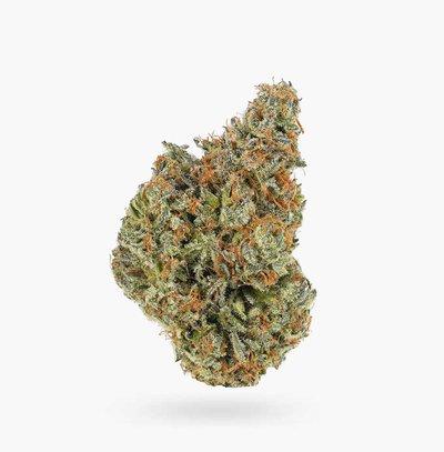 Tropicana OG (AAAA) Weed Wholesale   Hush Cannabis Club