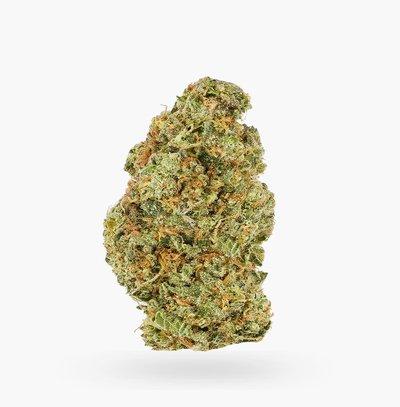 Lemon Haze Cans AAAA   Hush Cannabis Club