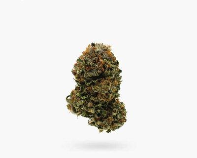 Buy Purple OG (AAA) Flower in Hamilton | Visit Stoni Cannabi