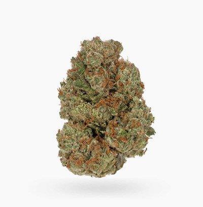 Blueberry Lambs Breath   Hush Cannabis Club
