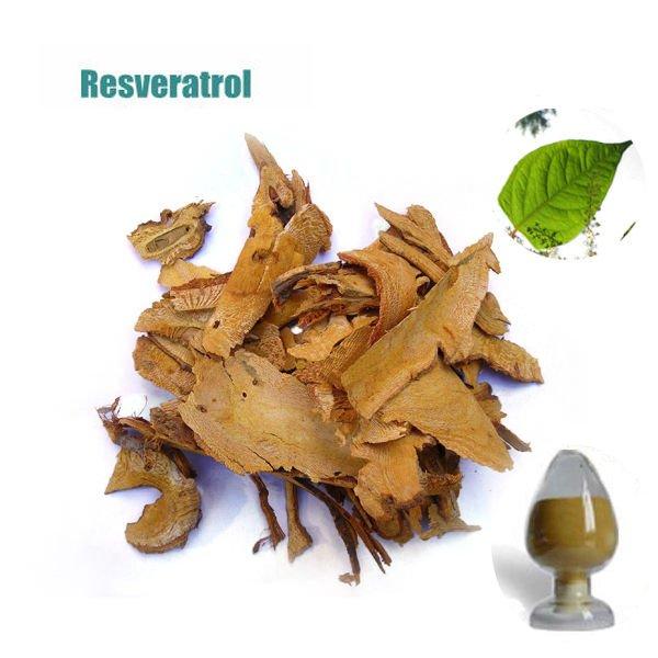 Resveratrol / Polygonum cuspidatum Extract