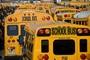 Various type of school bus restraint